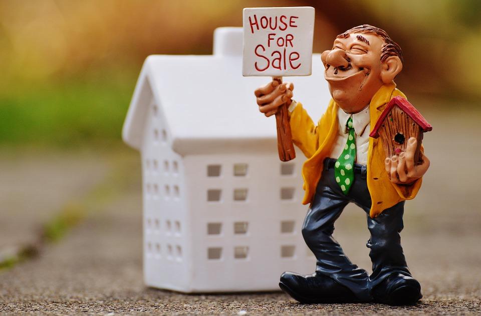 immobilier vente